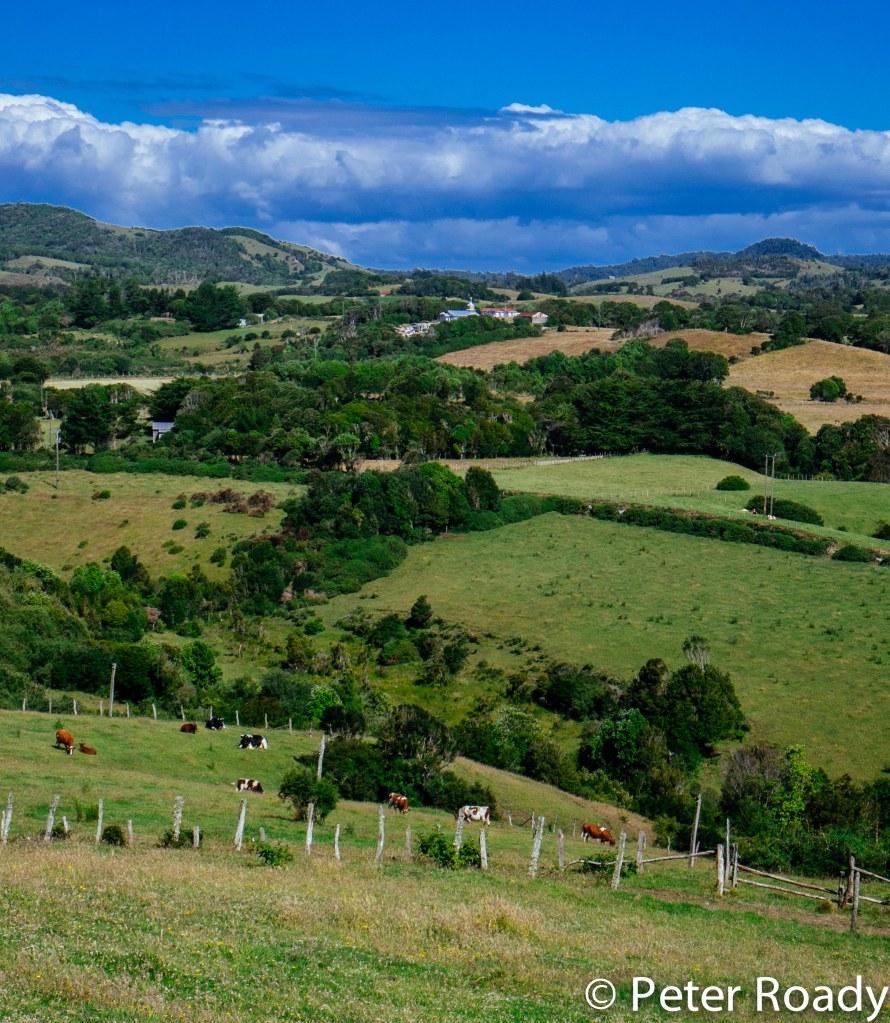 Chiloe landscape